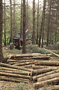 Logging Tractor Acrylic Prints - Forestry Acrylic Print by David Aubrey
