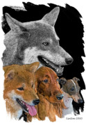 Grey Digital Art Framed Prints - From The Grey Wolf... Framed Print by Larry Linton