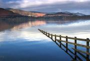 Woodland Scenes Prints - Lake Derwent, Cumbria, England Print by John Short