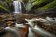 Nature Scene Prints - Looking Glass Falls Print by Andrew Soundarajan