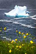 Drifting Snow Metal Prints - Melting iceberg Metal Print by Elena Elisseeva