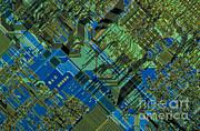 Microprocessor Print by Michael W. Davidson