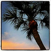 Photoport Art - <3 My Condo! #florida #vacation by Natalia D