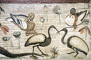 Ibis Photos - Nile Flora And Fauna, Roman Mosaic by Sheila Terry