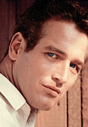 Newman Framed Prints - Paul Newman Framed Print by Everett