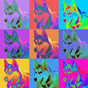 Pop Art Siberian Husky Print by Renae Laughner