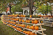 Carved Pumpkin Framed Prints - Pumpkin Festival Framed Print by John Greim