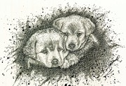 Pen And Ink Portraits Posters - Puppies Poster by Julie Ann Caldwell
