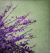 Texture Flower Prints - Purple Print by Kristin Kreet