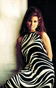 Halter Dress Framed Prints - Raquel Welch, 1960s Framed Print by Everett