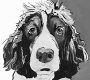 Black Nose Framed Prints - Sadie Framed Print by Pat Saunders-White