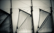 Sails Prints - 3 Sails In Monotone Of An Old Sailboat Print by Emilio Lovisa