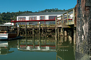 Sausalito Digital Art Framed Prints - Sausalito Framed Print by Carol Ailles