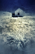 Decaying Prints - Shack in Infrared Print by Jill Battaglia