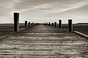 Sepia Acrylic Prints - Sol Legare Dock by Dustin K Ryan