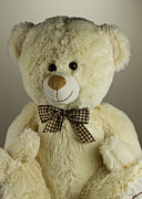 Toy Photo Posters - Teddy bear Poster by Blink Images