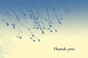 Trilby Cole - Thank you