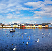 County Galway Framed Prints - The Claddagh Galway Framed Print by Gabriela Insuratelu