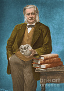 Comparative Anatomist Posters - Thomas Huxley, English Biologist Poster by Omikron