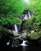 World Peace Art - Torc Waterfall, Killarney, Co Kerry by The Irish Image Collection