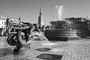 Trafalgar Framed Prints - Trafalgar Square Fountains London Framed Print by David French