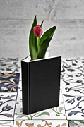 Symbolism Framed Prints - Tulip In A Book Framed Print by Joana Kruse