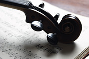 Classical Photos - Violin by Nichola Evans