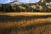 High Altitude Prints - Wasatch Mountains in Autumn Print by Utah Images