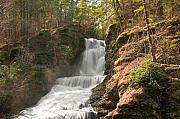 Svetlana Sewell - Waterfall
