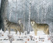 Wildlife Paintings - 3 Wolves by Sid Ball