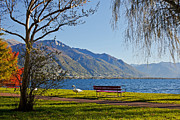 Lake View Prints - Lake Maggiore Print by Joana Kruse
