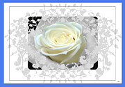 Intense Style Flower Mixed Media Posters - Wedding Rose Collection  Poster by Debra     Vatalaro