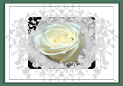 Designer Cards Mixed Media Posters - Wedding Rose Collection  Poster by Debra     Vatalaro