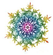 Science Source - Snowflake