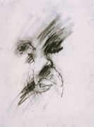 Stiff Drawings - Untitled by Iris Gill