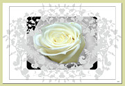 Invitations Framed Prints - Wedding Rose Collection  Framed Print by Debra     Vatalaro