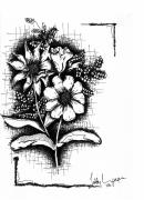Wild Flowers Drawings - Untitled by Teddy Campagna