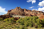Red Rock Framed Prints Prints - Capitol Reef National Park Print by Mark Smith