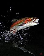 """rainbow Trout"" Art - 3D Rainbow by Brian Pelkey"