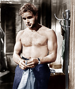 Films By Elia Kazan Acrylic Prints - A Streetcar Named Desire, Marlon Acrylic Print by Everett