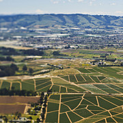 Cultivation Prints - Aerial View of Agricultural Farmland Print by Eddy Joaquim