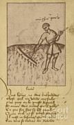 Illustration Art Photos - Agriculture, 15th Century by Science Source