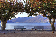 Benches Prints - Ascona - Lake Maggiore Print by Joana Kruse