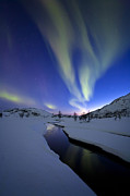 Troms County Prints - Aurora Borealis Over Skittendalen Print by Arild Heitmann