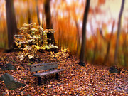 Autumn Landscape Digital Art - Autumn Ablaze by Jessica Jenney
