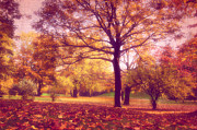 Park Mixed Media Prints - Autumn Print by Angela Doelling AD DESIGN Photo and PhotoArt