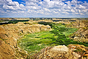 River View Prints - Badlands in Alberta Print by Elena Elisseeva