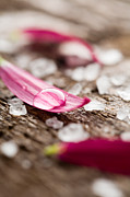 Petals Lifestyle Photos - Bath salt by Kati Molin