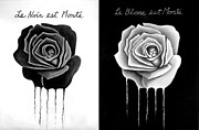 Darrell Ross - Black and White Roses