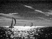 Fairhope Prints - 4 Boats on the Horizon BW Print by Michael Thomas